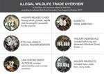 Illegal Wildlife Trade Overview (Aug-Oct 2019)