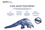 Illegal Wildlife Trade Overview (May-July 2019)